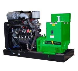LPG Power generator Manual and Automatic 1500 r/m